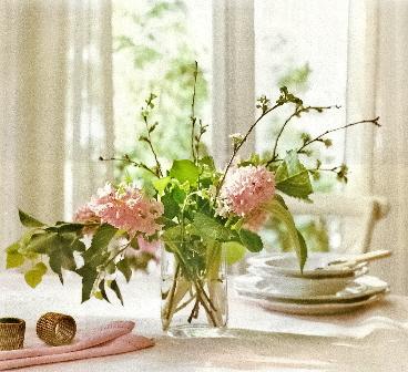 flores0043a.jpg