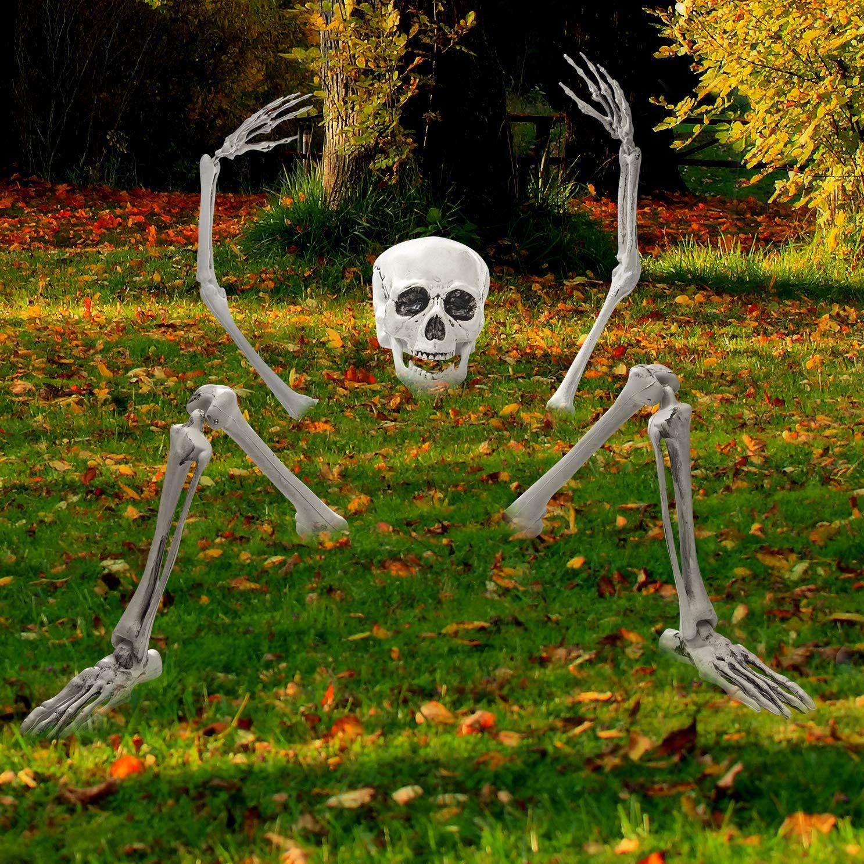 Esqueleto Halloween