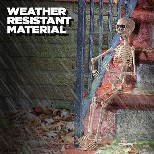 Esqueleto Halloween con articulaciones